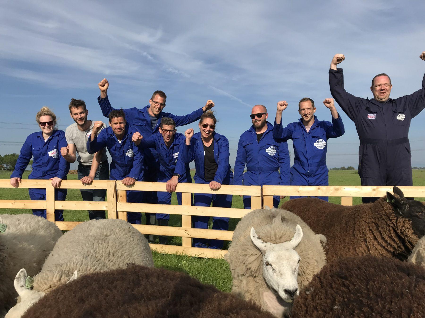 Team schapen drijven